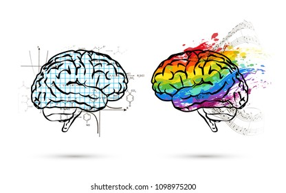 Technical and art hemispheres on human brain in side view, left and right brain functions concept isolated on white
