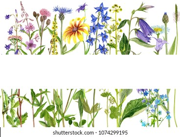 Template with watercolor drawing palnts and flowers, hand drawn illustration