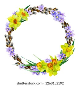 Tender spring willow wreath with light blue flowers and yellow narcissi hand drawn in watercolor isolated on a white background. Ideal for greeting cards, invitations. Beautiful Easter arrangement