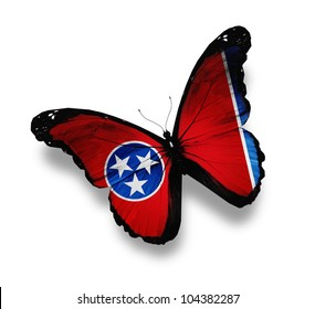 Tennessee flag butterfly, isolated on white