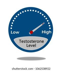 Testosterone level indicator
