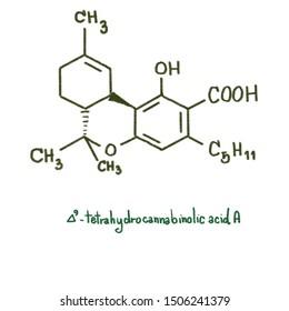 Tetrahydrocannabinolic acid is a precursor of tetrahydrocannabinol (THC), the active component of cannabis. THCA is found in variable quantities in fresh, undried cannabis.