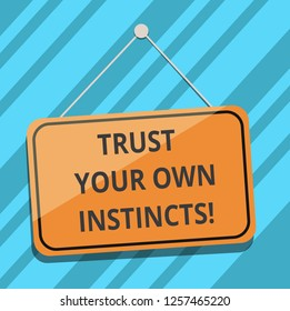 Text sign showing Trust Your Own Instincts. Conceptual photo Intuitive follow demonstratingal feelings confidence Blank Hanging Color Door Window Signage with Reflection String and Tack.