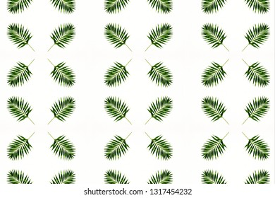 Texture of plants for design. Can be used as a background, wallpaper