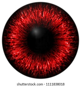 Texture red eye 3d with white lines and black fringe