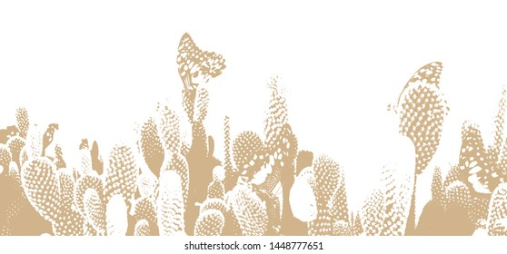 Textures of abstract Opuntia with background white