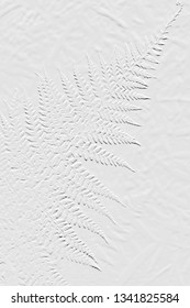 Textures of embossed leaf light grey  background can be use as useful card