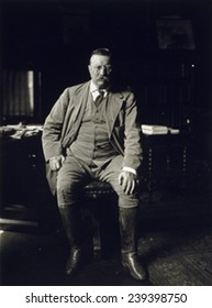 Theodore Roosevelt in his library at Oyster Bay N.Y in 1912, the year he would challenge his successor, William Taft, for the Republican presidential nomination.