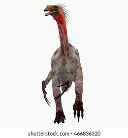 Therizinosaurus Dinosaur on White 3D Illustration - Therizinosaurus was a carnivorous theropod dinosaur that lived in the Cretaceous Period of Mongolia.