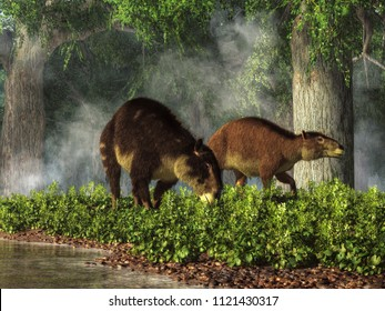 "These are Eohippus, or ""dawn horse"", the earliest known ancestor of the modern horse after the extinction event that ended the reign of the dinosaurs. Also known as hyracotherium. 3D Rendering"