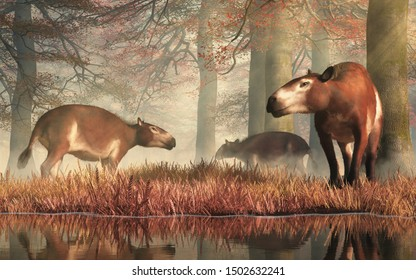 """These are Eohippus, or """"dawn horse"""", the earliest known ancestor of the modern horse after the extinction event that ended the reign of the dinosaurs. Also known as hyracotherium. 3D Rendering"""
