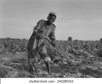 Thirteen-year old African American sharecropper boy plowing in July 1937. Photo by Dorothea Lange.