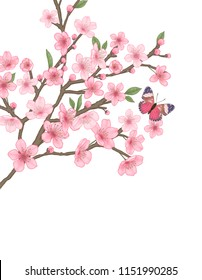 This illustration is pink flower. A delicate touch and sophisticated color expressed in Photoshop Brush.