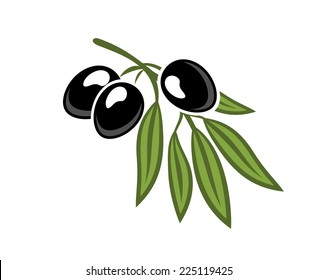 Three black olives on a leafy green twig for vegetarian food concept design, cartoon illustration isolated on white