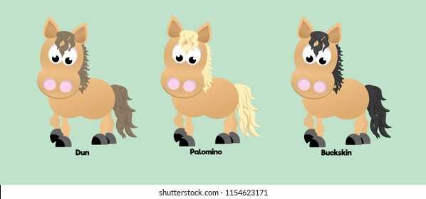 Three horses showing different coat colours: dun, palomino, and buckskin