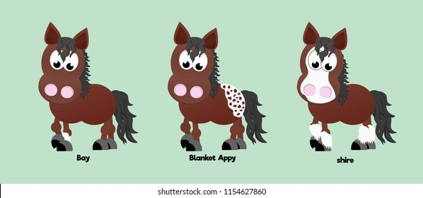 Three horses showing different coat colours: bay, blanket appaloosa, and shire