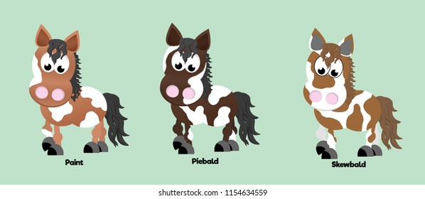 Three horses showing different coat colours: paint, piebald and skewbald