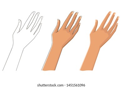 Three options female hand. Linear, tonal and contour.  Isolated on white background