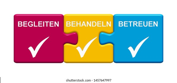 Three Puzzle Buttons with tick symbol showing  Accompaniment, Treatment, Care in german language