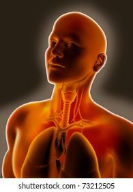 Throat or larynx