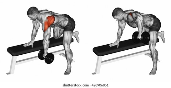 Thrust dumbbells in the slope rear deltoid. 3D illustration