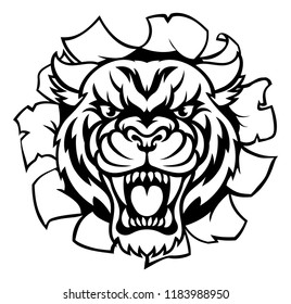 A Tiger angry animal sports mascot breaking through the background