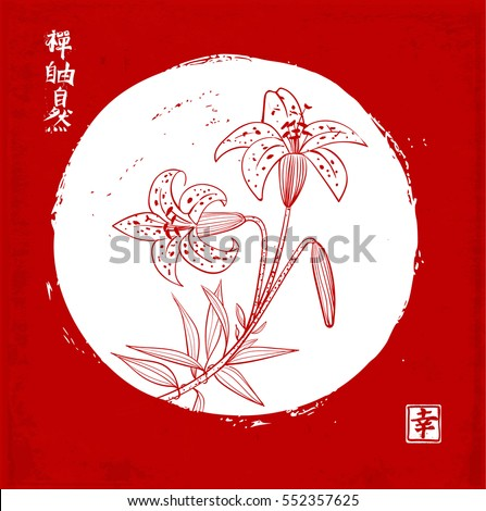 b55011f27 Tiger lily flowers in white circle on red background. Traditional oriental  ink painting sumi-