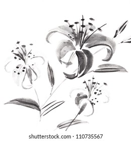 Tiger Lily on White Background -Ink Painting.