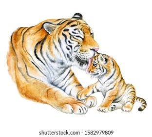 Tigers. Mom with a child, tiger cub isolated on a white background. A tigress mum washes a baby. Watercolor. Illustration. template. Close-up. Clipart. Mothers Day. Greeting card design.