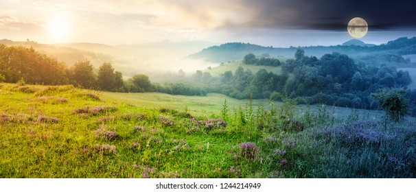 time change concept. panorama of beautiful foggy landscape in mountains. purple thyme flowers on the grassy meadow. high mountain in the distance. wonderful landscape