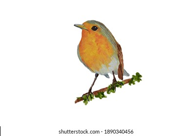 Tiny robin bird on a branch oil painting and illustration
