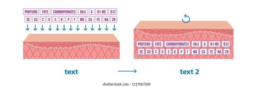 tissues distribution. process of assimilation of nutrients. Microelements. Microelements.  tissular cell