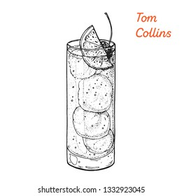 Tom Collins cocktail illustration. Alcoholic cocktails hand drawn illustration. Sketch style.