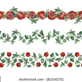 Tomatoes and basil: set of three seamless watercolour painted borders, isolated on white. For duct tape, recipe, menu, cookbook, stationery and packaging design.