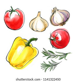 Tomatoes, rosemary, garlic, sweet pepper. painted with watercolor on a white background. A colored sketch of vegetables with mascara and paint. Farm products.