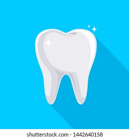 Tooth with long shadow. Icon design, flat style. Illustration isolated on blue background.