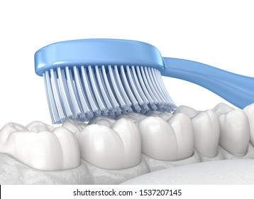 Toothbrush cleaning teeth, Isolated on white. Medically accurate 3D illustration of oral hygiene.