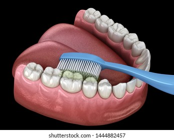 Toothbrush cleaning teeth. Medically accurate 3D illustration of oral hygiene.