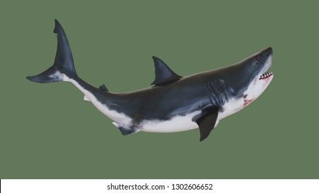 Toothy shark. 3d illustration