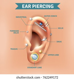 Top different types of ear piercing trendy positions picture infographic elements natural  background poster  illustration