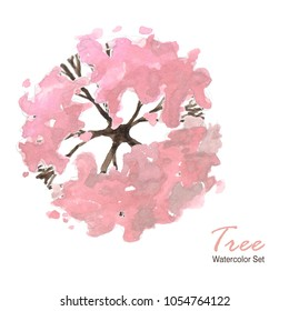 top tree watercolor spring set pink  sakura tree spring isolated on white background ; illustration top view tree watercolour landscape architecture