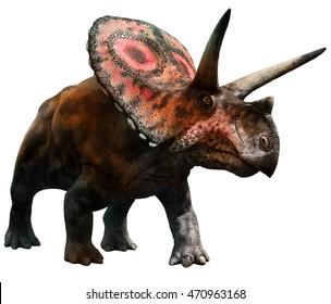 Torosaurus 3D illustration