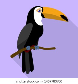Toucan on tree branch icon. Flat illustration of toucan on tree branch icon for web design