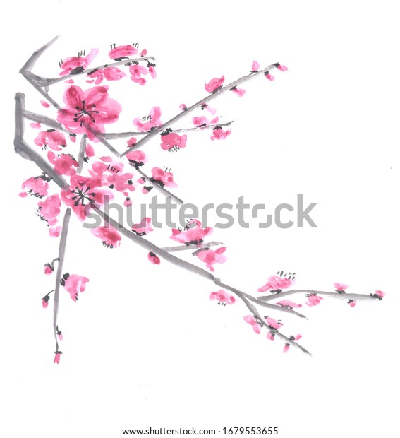 Traditional Chinese Painting. Cherry tree flowers on the branch of tree.