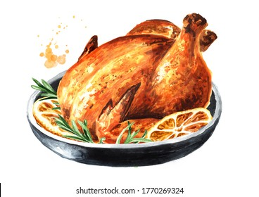 Traditional Christmas or thanksgiving roasted turkey, garnished with orange fruit slices and herbs, Hand drawn watercolor illustration, isolated on white background