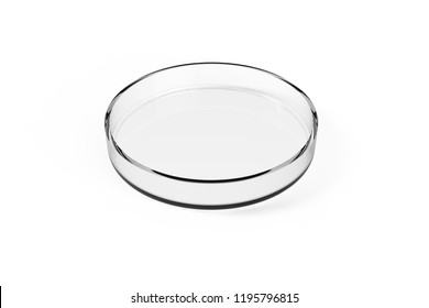 Transparent glass Petri dish on white background. 3D rendering