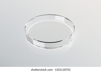 Transparent glass Petri dish on white gloss background. 3D rendering
