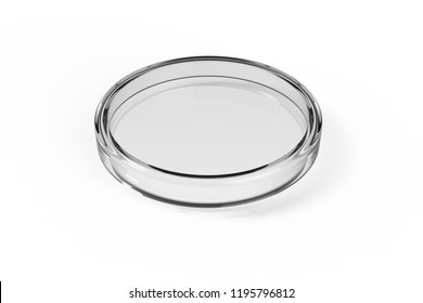 Transparent glass Petri dishes on white background. 3D rendering