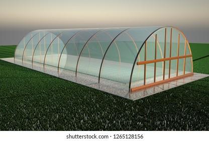 Transparent greenhouse over green grass, 3d rendering