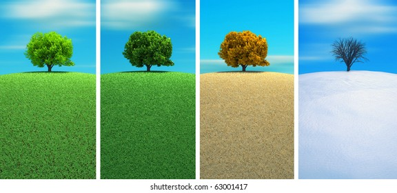 A tree in four seasons - 3d render